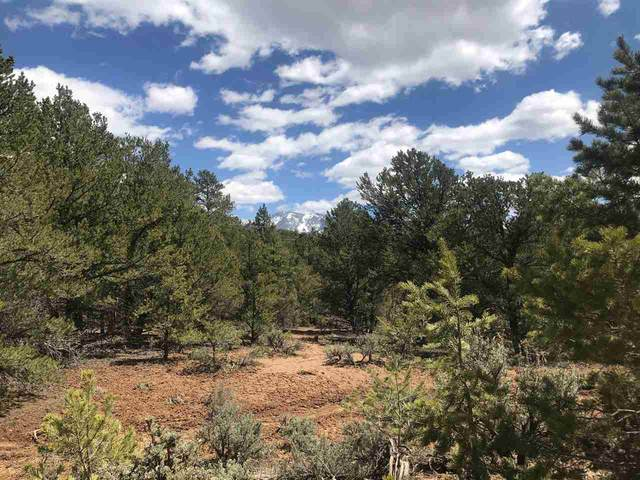 157 Gallina Canyon, Taos, NM 87580 (MLS #106815) :: Angel Fire Real Estate & Land Co.