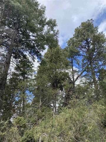 xx El Salto Road, Arroyo Seco, NM 87514 (MLS #106825) :: Coldwell Banker Mountain Properties