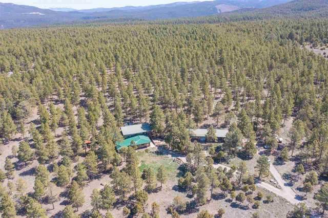138 Llano De La Llegua Rd, Rodarte, NM 87579 (MLS #106831) :: Chisum Realty Group