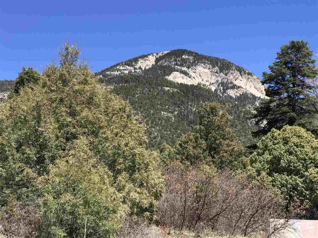 Calle Coyote, El Salto, NM 87514 (MLS #106842) :: Angel Fire Real Estate & Land Co.