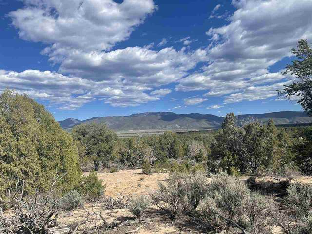 00 6 10Ths Mile On North Road, Carson, NM 87517 (MLS #106850) :: Angel Fire Real Estate & Land Co.