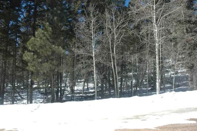 79 Kiowa Circle, Angel Fire, NM 87710 (MLS #106855) :: Angel Fire Real Estate & Land Co.