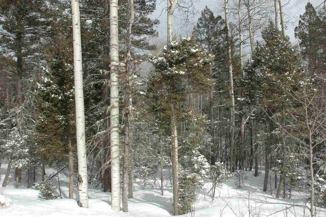 41 Alcalde Rd, Angel Fire, NM 87710 (MLS #106856) :: Angel Fire Real Estate & Land Co.