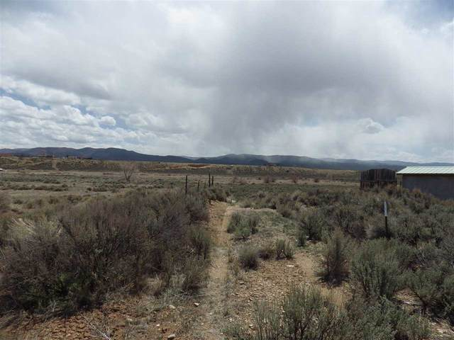000 Lower Colonias Road, Taos, NM 87571 (MLS #106862) :: Chisum Realty Group