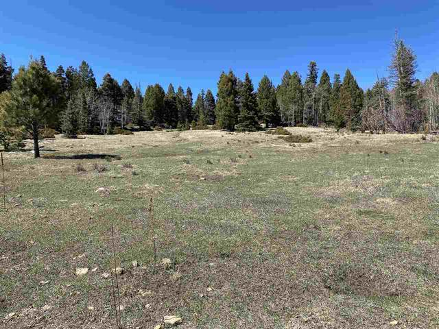Lot 1023 Starshine Overlook, Angel Fire, NM 87710 (MLS #106863) :: Angel Fire Real Estate & Land Co.