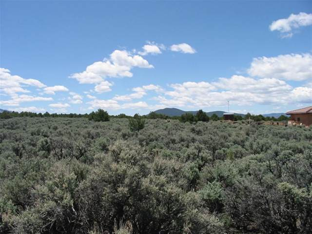 Jedediah Rd, El Rito, NM 87556 (MLS #106869) :: Angel Fire Real Estate & Land Co.