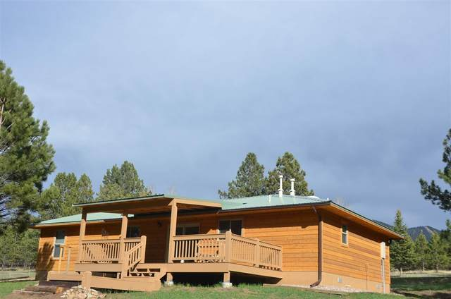 73 Halo Pines Ct, Angel Fire, NM 87710 (MLS #106882) :: Angel Fire Real Estate & Land Co.