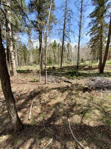 Lot 638 Sarazen Terr, Angel Fire, NM 87710 (MLS #106914) :: Angel Fire Real Estate & Land Co.