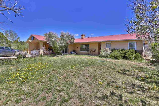 525 Camino Coronado, Taos, NM 87571 (MLS #106920) :: Angel Fire Real Estate & Land Co.