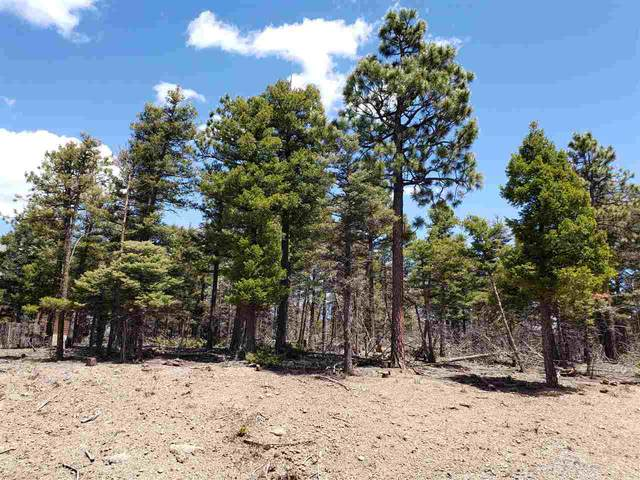 Lot 326 S Vail Loop, Angel Fire, NM 87710 (MLS #106922) :: Chisum Realty Group