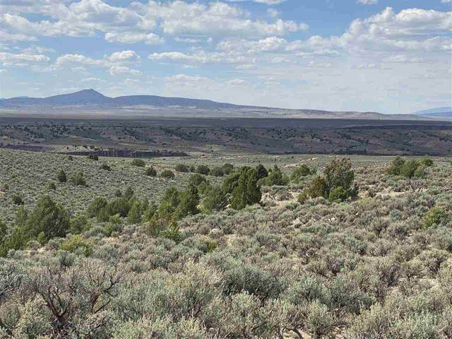 0 Spirit Dog Rd, Ranchos de Taos, NM 87557 (MLS #106925) :: Chisum Realty Group