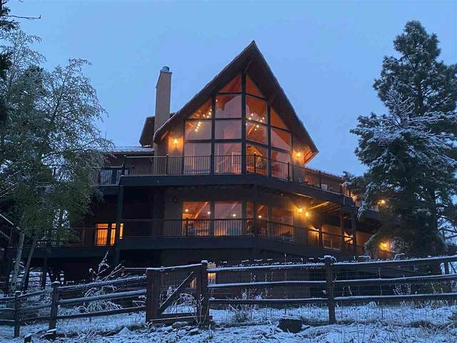 98 Taos Pines Ranch Road, Angel Fire, NM 87710 (MLS #106934) :: Chisum Realty Group