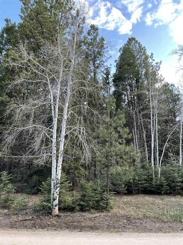 67 Armijo, Angel Fire, NM 87710 (MLS #106947) :: Chisum Realty Group
