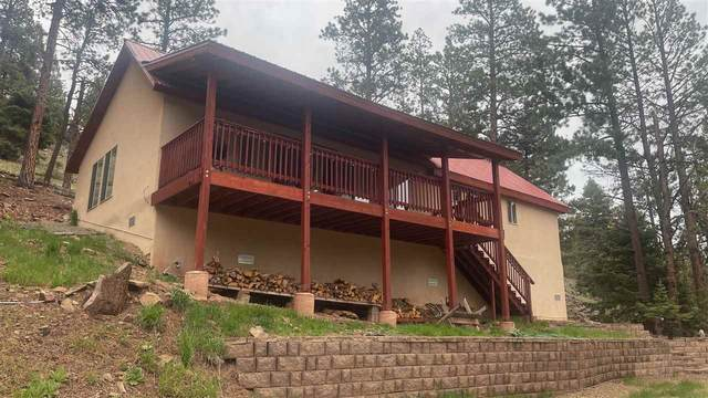 298 State Rd 127, Eagle Nest, NM 87718 (MLS #106957) :: Angel Fire Real Estate & Land Co.