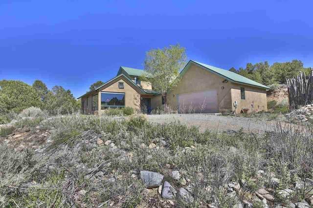 25 Sandia Canyon Rd, Arroyo Hondo, NM 87513 (MLS #106990) :: Page Sullivan Group