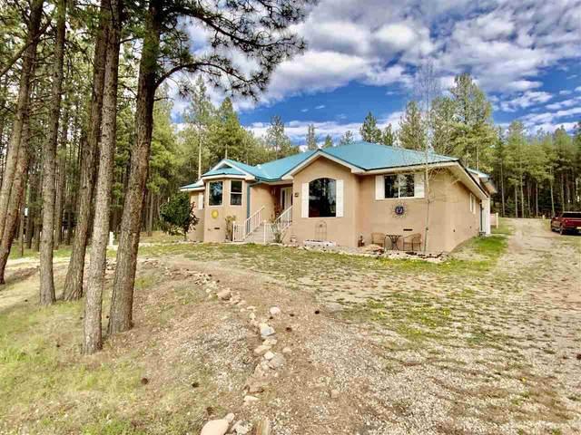 61 Sarazen Terrace, Angel Fire, NM 87710 (MLS #106993) :: Coldwell Banker Mountain Properties
