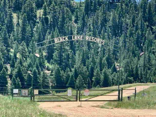 Stricks Rd 2 Acres, Angel Fire, NM 87710 (MLS #106999) :: Berkshire Hathaway Home Services
