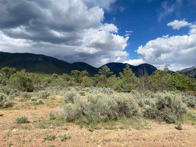 Deer Mesa Road, Valdez, NM 87580 (MLS #107010) :: Coldwell Banker Mountain Properties