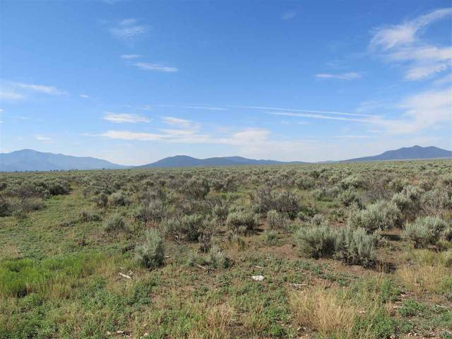 Us Highway 64, Tres Piedras, NM 87577 (MLS #107023) :: Chisum Realty Group