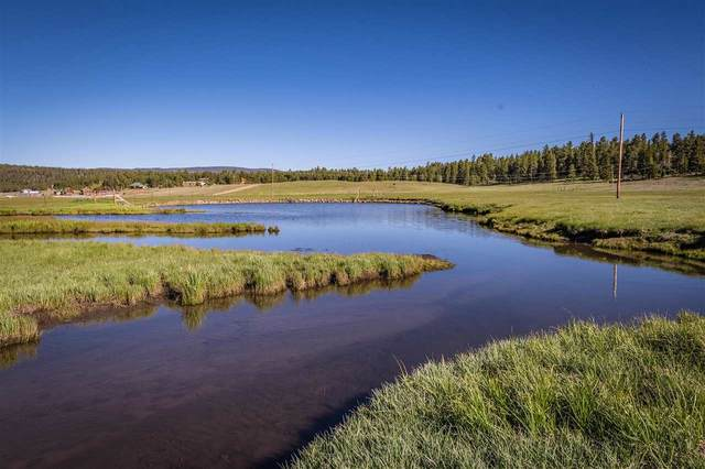 2939 Hwy 434, Angel Fire, NM 87710 (MLS #107026) :: Coldwell Banker Mountain Properties