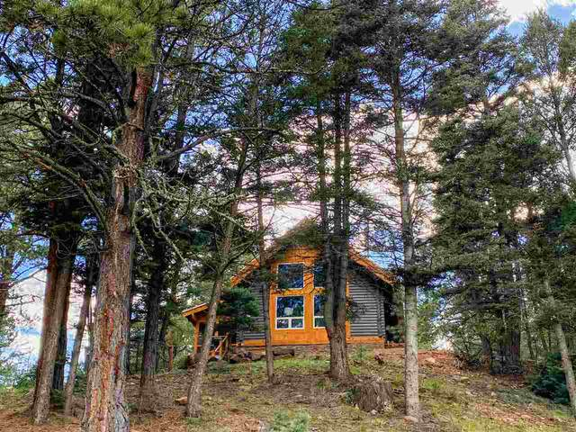 166 Windy Hill Road, Angel Fire, NM 87710 (MLS #107031) :: Berkshire Hathaway Home Services