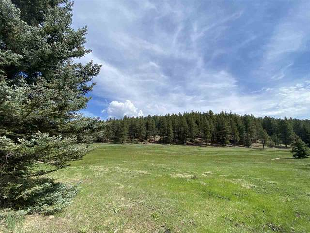 Lot 140 San Andres, Angel Fire, NM 87710 (MLS #107033) :: Angel Fire Real Estate & Land Co.