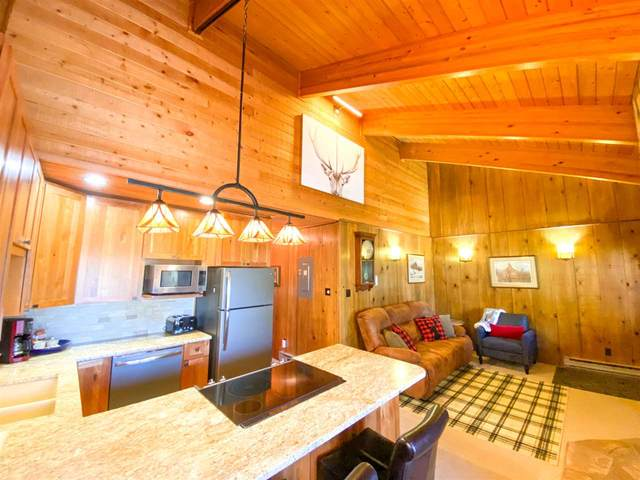 44 Mammoth Mountain, Angel Fire, NM 87710 (MLS #107047) :: Chisum Realty Group