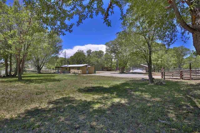 703 Don Roberto Road, Taos, NM 87571 (MLS #107050) :: Berkshire Hathaway Home Services