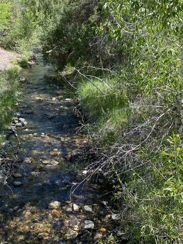 0 Calle De Sol Road, Questa, NM 87556 (MLS #107053) :: Angel Fire Real Estate & Land Co.