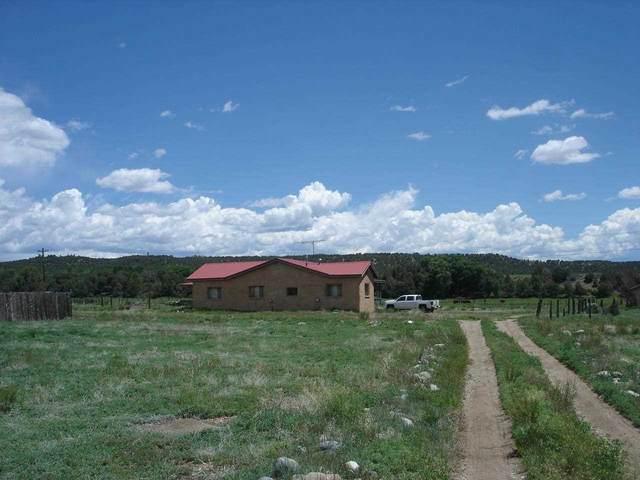 10 Hondo Seco Rd, Taos, NM 87571 (MLS #107054) :: Page Sullivan Group