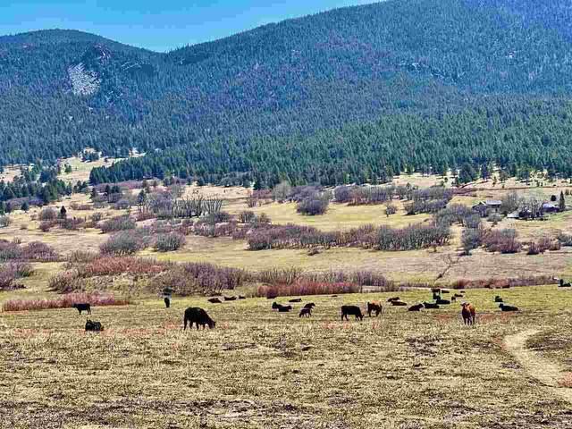 Luna Canyon Road, Mora, NM 87713 (MLS #107059) :: Chisum Realty Group
