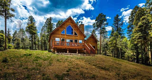 65 Vermejo Circle, Angel Fire, NM 87710 (MLS #107060) :: Coldwell Banker Mountain Properties