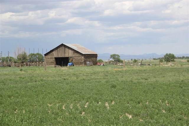 382 Springer Lake Rd, Springer, NM 87718 (MLS #107066) :: Chisum Realty Group