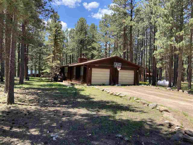 17 Pinehurst Way, Angel Fire, NM 87710 (MLS #107068) :: Berkshire Hathaway Home Services