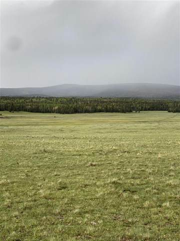 30 acres Off Of Hwy 120, Angel Fire, NM 87710 (MLS #107072) :: Chisum Realty Group