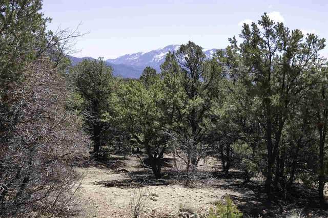 Lot 14 Deer Mesa, Valdez, NM 87580 (MLS #107074) :: Angel Fire Real Estate & Land Co.