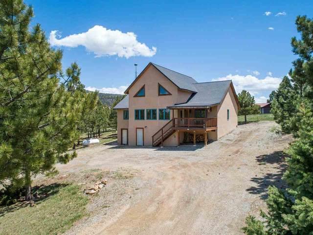 23 Oakwood Lane, Angel Fire, NM 87710 (MLS #107090) :: Coldwell Banker Mountain Properties