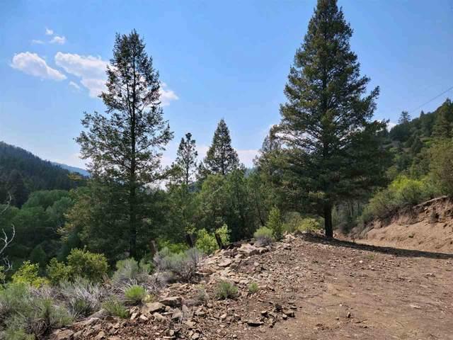 Pt sec 28 29 Highway 64 West, Taos, NM 87571 (MLS #107103) :: Berkshire Hathaway Home Services