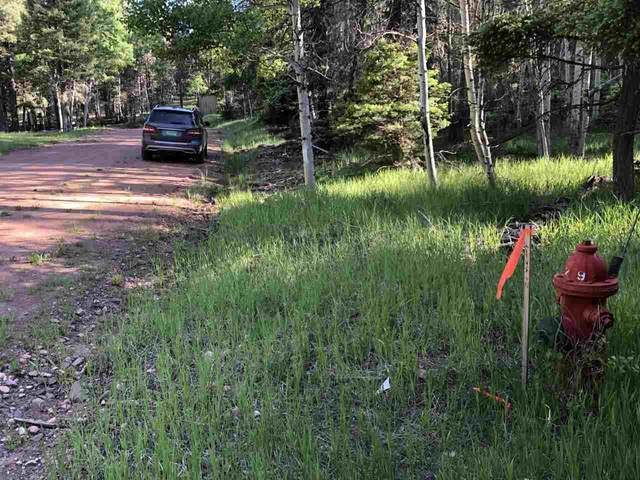 2 Blue Lake Terrace, Angel Fire, NM 87710 (MLS #107107) :: Berkshire Hathaway Home Services