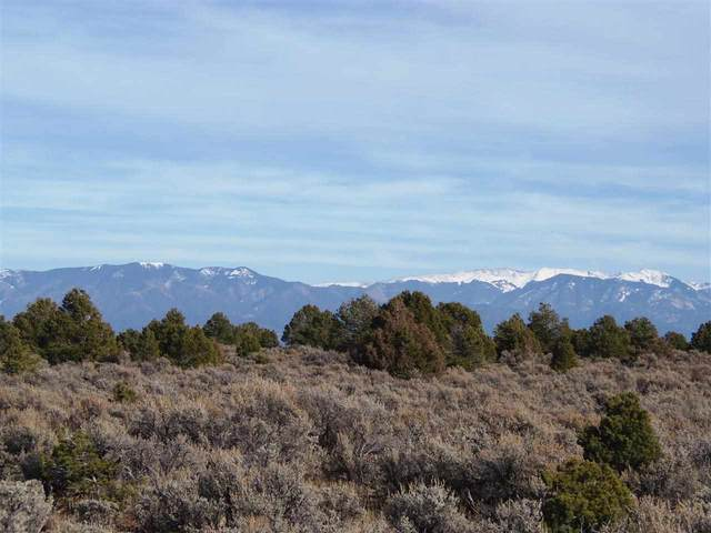 MM 0379 Hwy 285 S Of Tp, Tres Piedras, NM 87577 (MLS #107108) :: Berkshire Hathaway Home Services