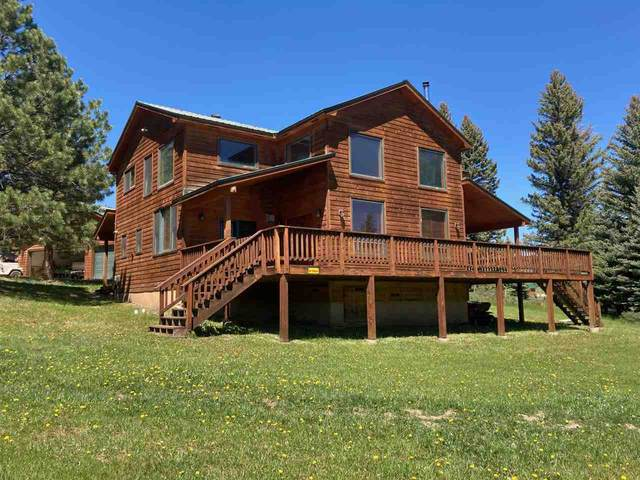 61 Clint Road, Taos, NM 87571 (MLS #107117) :: Berkshire Hathaway Home Services