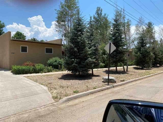 327B Randall Lane, Taos, NM 87571 (MLS #107119) :: Berkshire Hathaway Home Services
