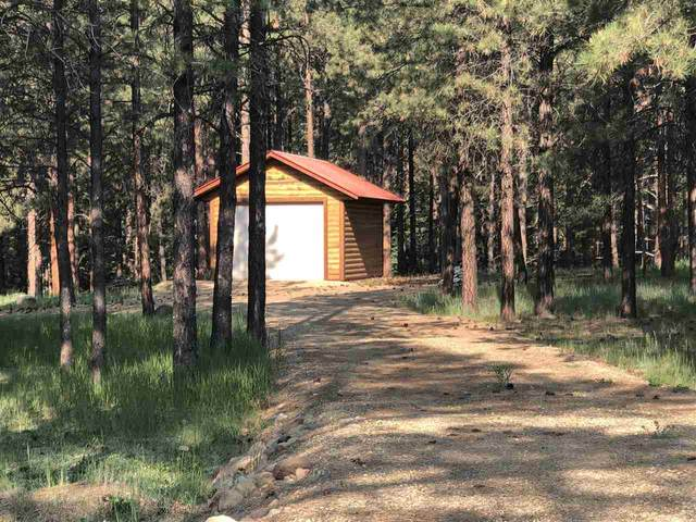 Lot 10 Pine Ridge Subdivision, Angel Fire, NM 87710 (MLS #107130) :: Coldwell Banker Mountain Properties