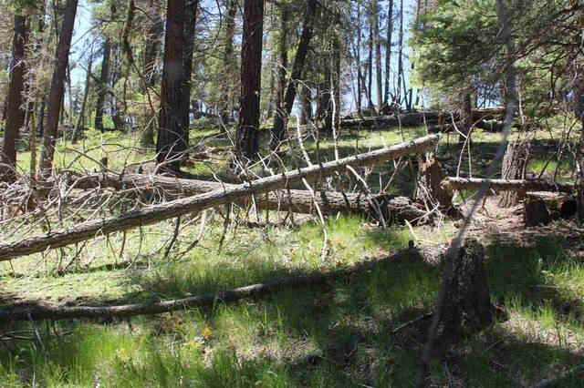 3 3B SW El Vado Way, Angel Fire, NM 87710 (MLS #107131) :: Chisum Realty Group