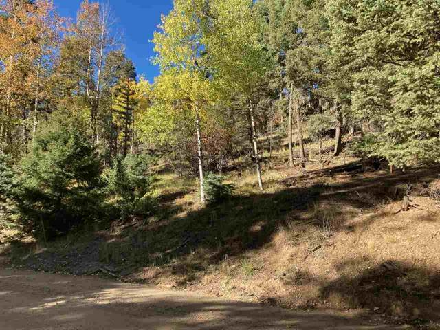 Tract G 1 Taos Dr, Angel Fire, NM 87710 (MLS #107142) :: Page Sullivan Group
