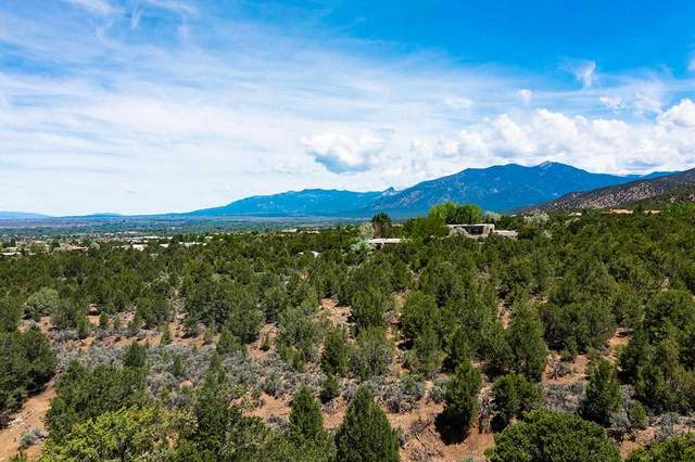 South Verde Road, Taos, NM 87571 (MLS #107151) :: Chisum Realty Group