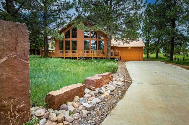 20 Armijo Drive, Angel Fire, NM 87718 (MLS #107155) :: Angel Fire Real Estate & Land Co.