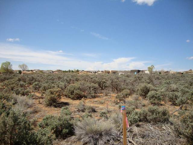 Lower Colonias, El Prado, NM 87529 (MLS #107178) :: Coldwell Banker Mountain Properties