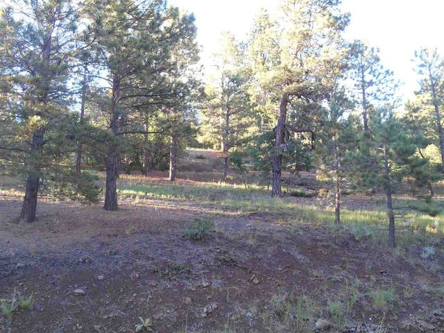 10 Upper Road, Angel Fire, NM 87710 (MLS #107274) :: Chisum Realty Group