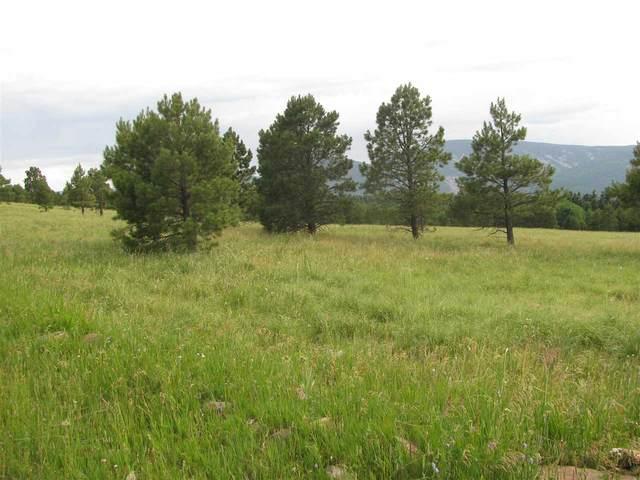 tbd Pine Road, Black Lake, NM 87710 (MLS #107286) :: Chisum Realty Group